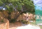 Lote no condomínio Bosque da Praia - Foto